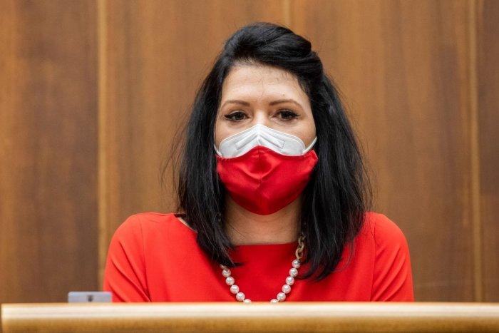 Ilustračný obrázok k článku Poslankyňa Bittó Cigániková smúti: Jej exmanžel prehral boj so zákernou chorobou