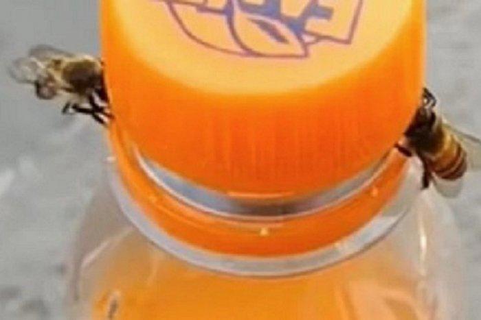"""Ilustračný obrázok k článku KURIOZITA DŇA: Včely sa dohodli na spolupráci """"mimo fachu"""". Otvorili si malinovku!"""