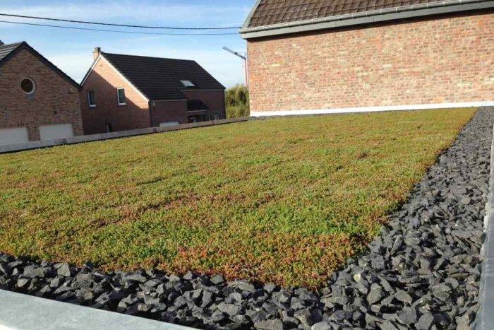 Ilustračný obrázok k článku Chcete zelenú strechu za jeden deň? Skúste substrát zminerálnych vlákien