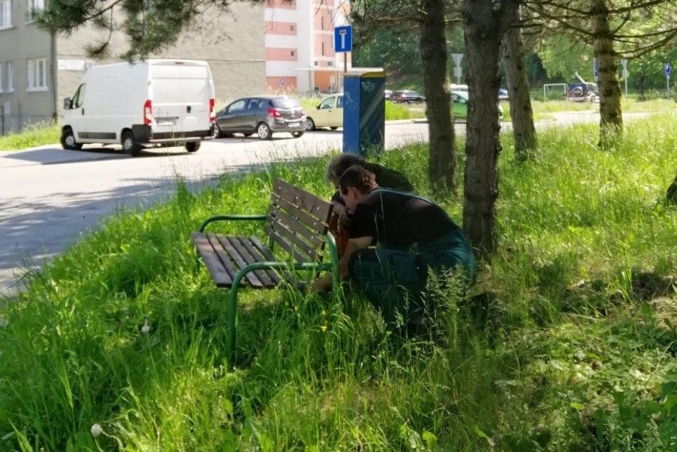 Ilustračný obrázok k článku Mnohí Bystričania sa potešia: V uliciach pribudli desiatky nových lavičiek, FOTO