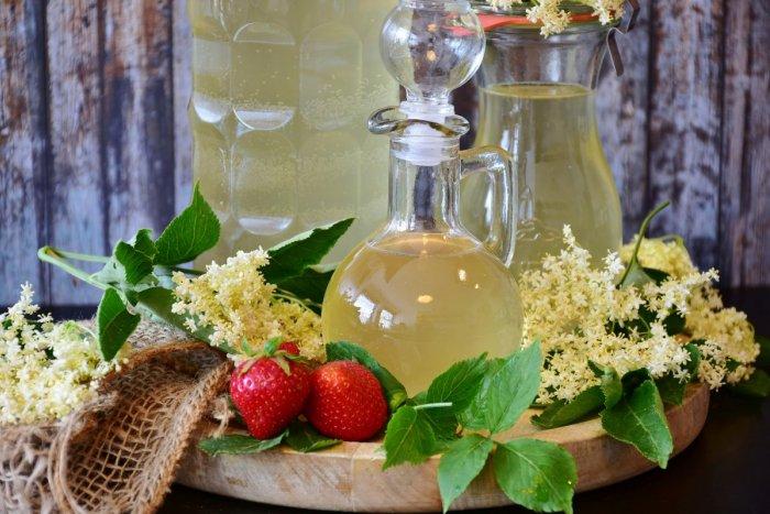 Ilustračný obrázok k článku Baza rozkvitla! Vychutnajte si liečivé účinky voňavých kvietkov + RECEPT na sirup