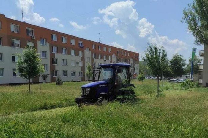 Ilustračný obrázok k článku Novovital bojuje s prerastenou trávou: Sklz bude dobiehať niekoľko týždňov