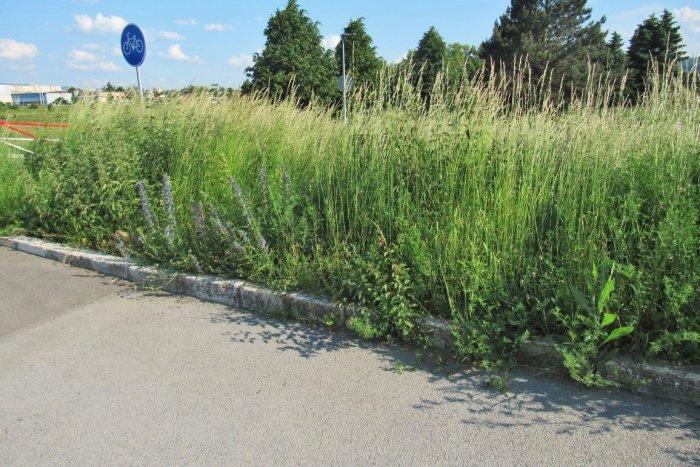 Ilustračný obrázok k článku Čo aktuálne Prešovčanov vytáča najviac? PRALES v uliciach na každom kroku! FOTO