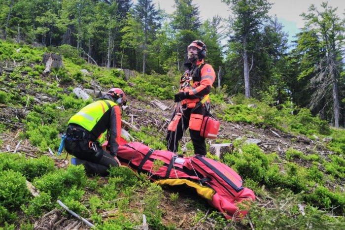 Ilustračný obrázok k článku Paraglajdista núdzovo pristál na strome: Do nemocnice ho previezol vrtuľník