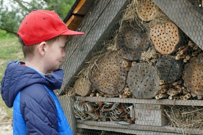 Ilustračný obrázok k článku Úžasné, čo sa podarilo na školách v Banskobystrickom kraji: Vybudovali záhrady aj hmyzí domček