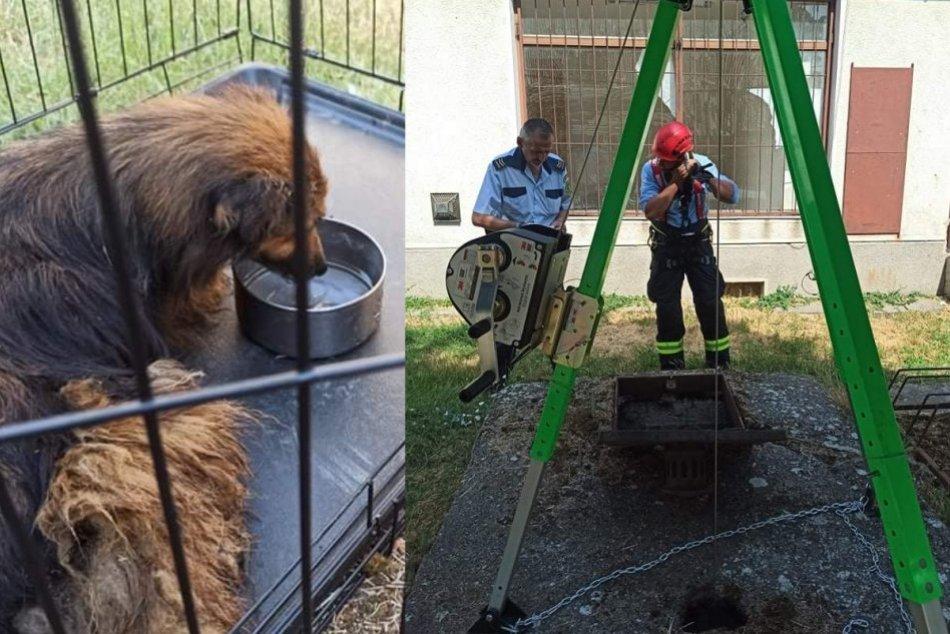 Ilustračný obrázok k článku Hasiči opäť zasahovali: Zachránili život psíka, ktorý spadol do studne