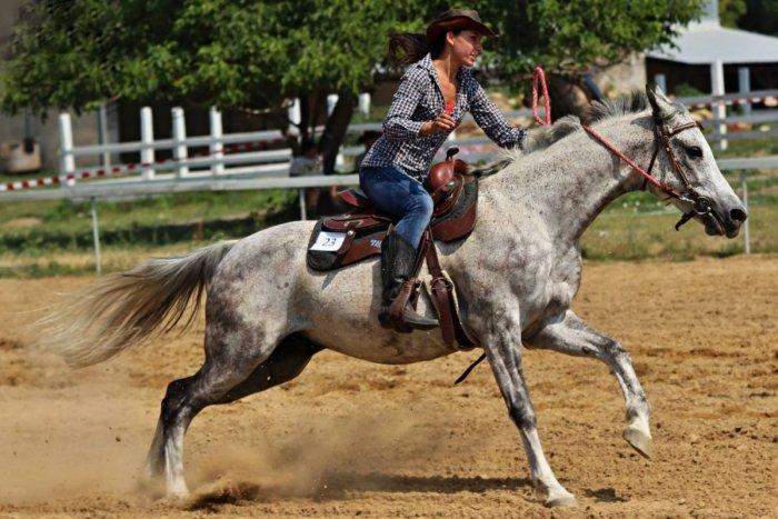 Ilustračný obrázok k článku Pripravte sa na deň plný koní: V Trnovci sa bude súťažiť vo westernovom jazdení