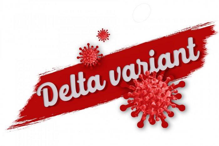 Ilustračný obrázok k článku Nákazlivejší delta variant straší celý svet: Najnovšie zistenie odborníkov dáva NÁDEJ!
