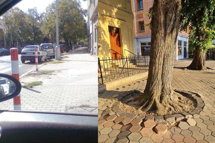 Ilustračný obrázok k článku Chýbajúce značky a zničená dlažba: Mesto riešilo ďalšie občianske podnety