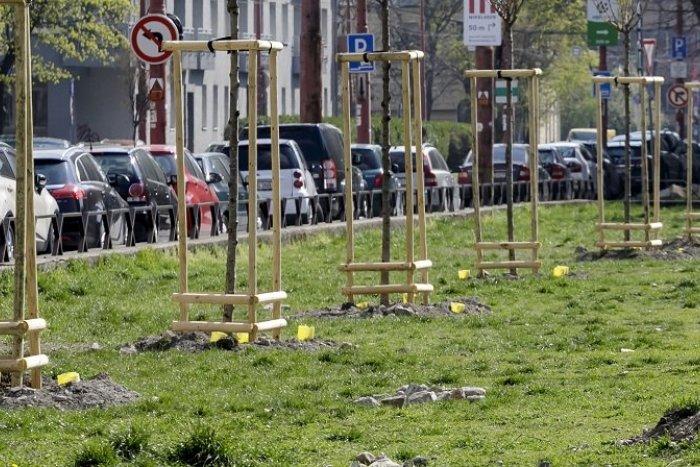 Ilustračný obrázok k článku Pribudnú ďalšie BUS PRUHY, tentoraz na Karadžičovej a Legionárskej ulici. Ako zmenia dopravu?