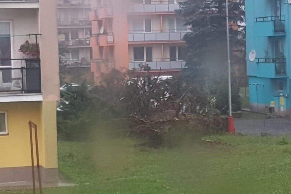 Ilustračný obrázok k článku Búrky v Banskobystrickom kraji polámali stromy, komplikujú tiež dopravu, FOTO