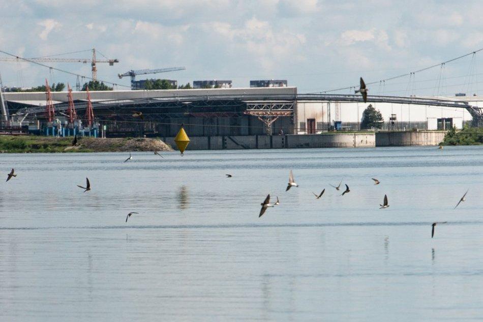 """Ilustračný obrázok k článku """"Developerský"""" projekt na brehu Dunaja má veľký úspech: Obyvatelia sú nadšení!"""