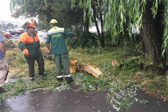 Ilustračný obrázok k článku Košice po silných búrkach: Polámané stromy aj zatvorený cintorín, FOTO