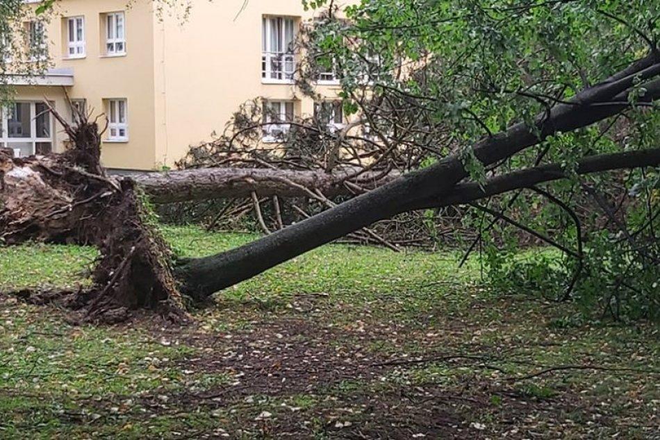 Ilustračný obrázok k článku Silné búrky vyvracali stromy, strhli strechu a vytopili čerpaciu stanicu