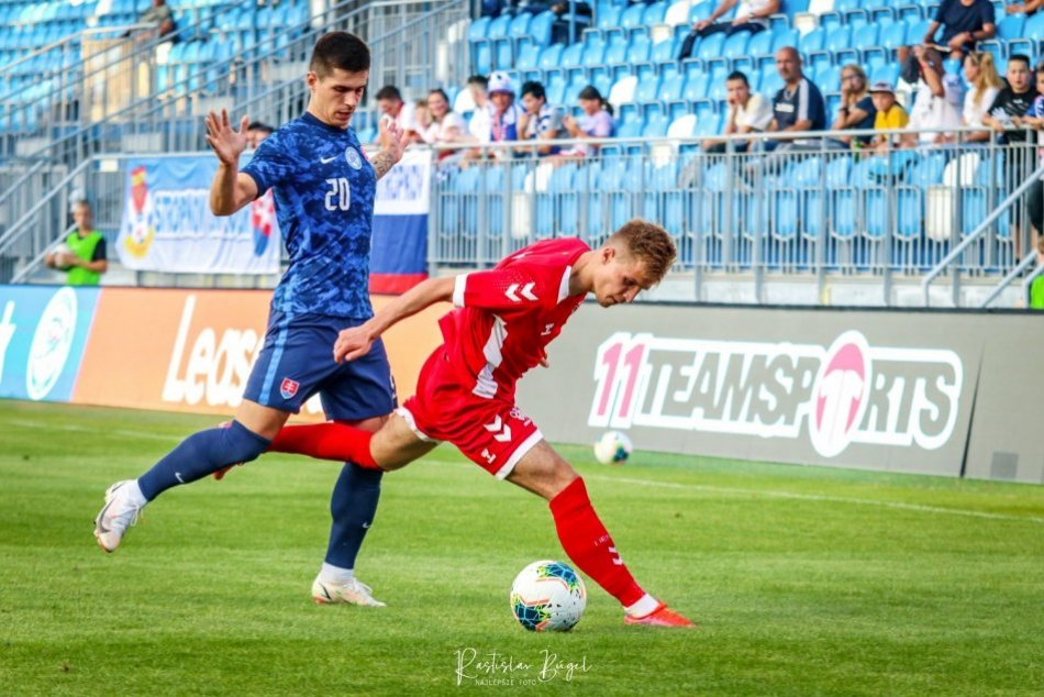 Ilustračný obrázok k článku Sokolíci na úvod kvalifikácie víťazne: V Nitre si poradili s Litvou, FOTO