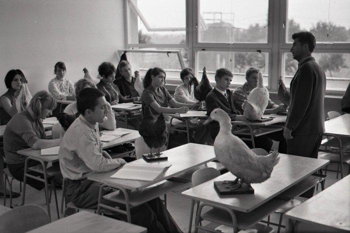 Ilustračný obrázok k článku Teror od učiteľov: Kružidlom do nohy a tresty, desivé spomienky z ČSSR aj po páde režimu