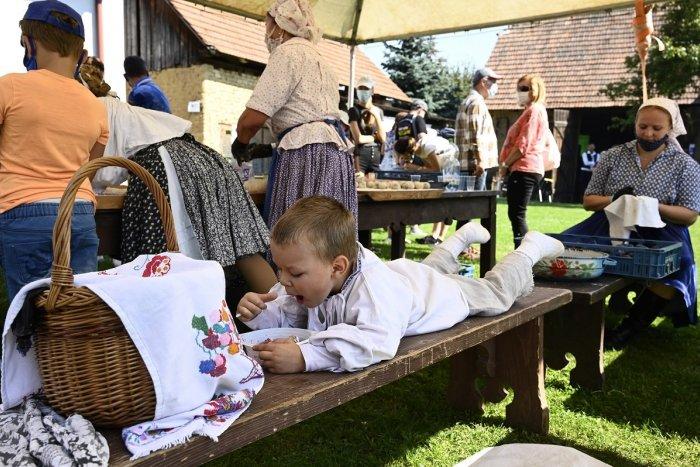 Ilustračný obrázok k článku Dni sliviek sú tu: Populárne podujatie privíta Gazdovský dvor