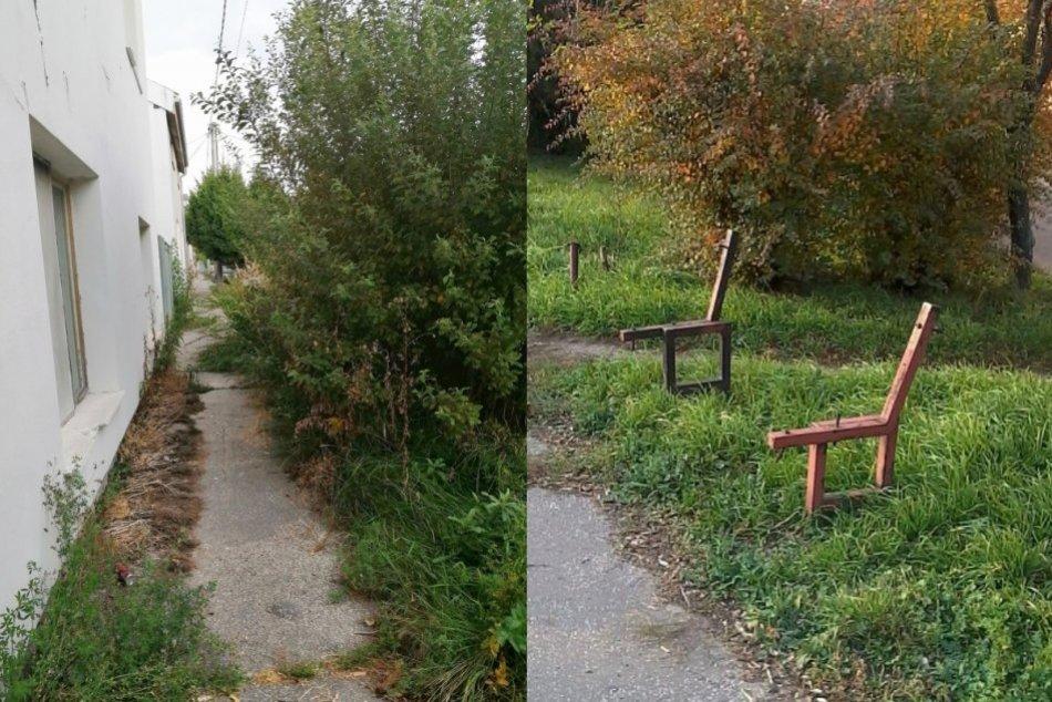 """Ilustračný obrázok k článku Mesto reaguje na ďalšie podnety: Riešilo """"džungľu"""" pred bytovkou aj zničenú lavičku"""