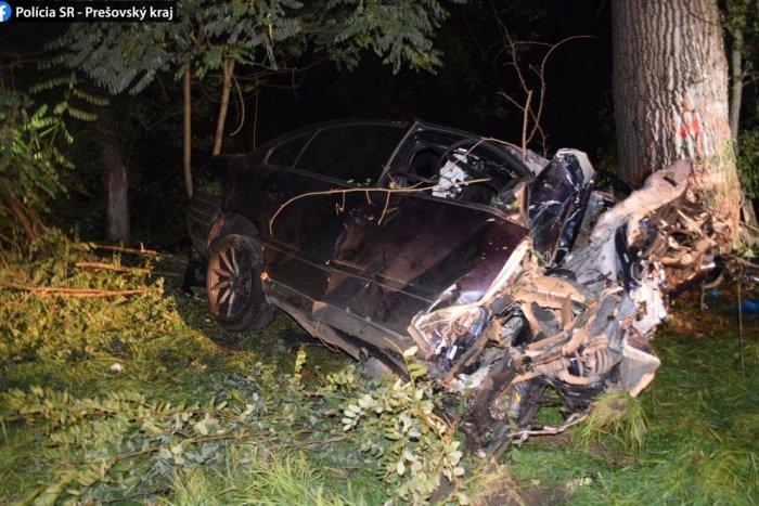 Ilustračný obrázok k článku Smrteľná nehoda pri Snine. Vodič mal zákaz šoférovať, náraz do stromu neprežil