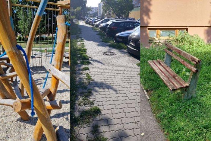 Ilustračný obrázok k článku Zarastené chodníky aj poškodený strom: Aké problémy nahlásili Zámčania?
