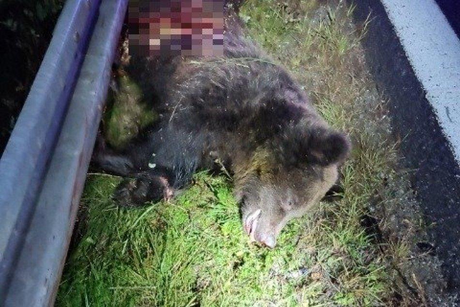 Ilustračný obrázok k článku Medzi Zvolenom a Žiarom došlo k zrážke s medveďom: Odniesli si to 2 autá, FOTO