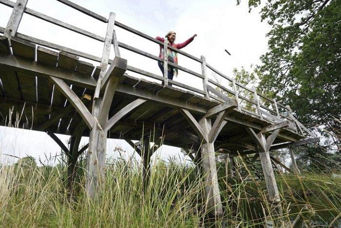 Ilustračný obrázok k článku KURIOZITA DŇA: Drevený most z Medvedíka Pú sa predal za dvojnásobok vyvolávacej ceny